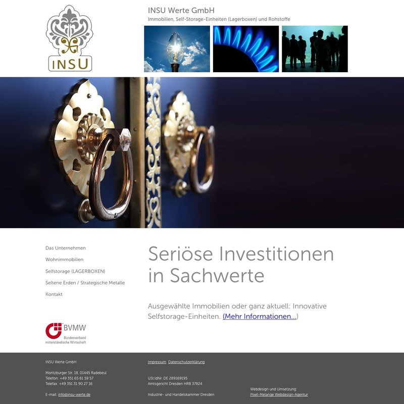 Webdesign der INSU-Website